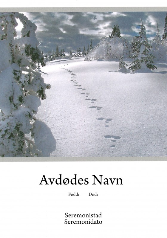 Harespor i snøen